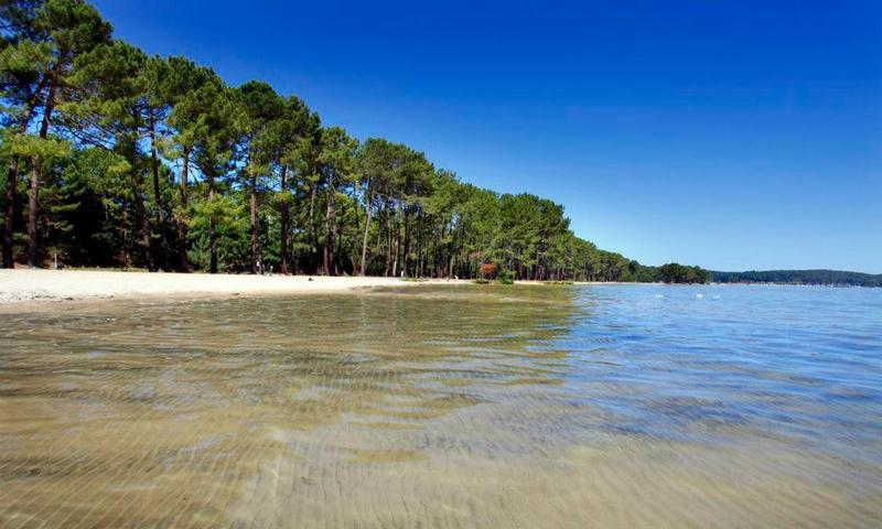 La c te d 39 argent les grands lacs de biscarrosse mimizan aux alentours le parc - Office du tourisme biscarrosse ...