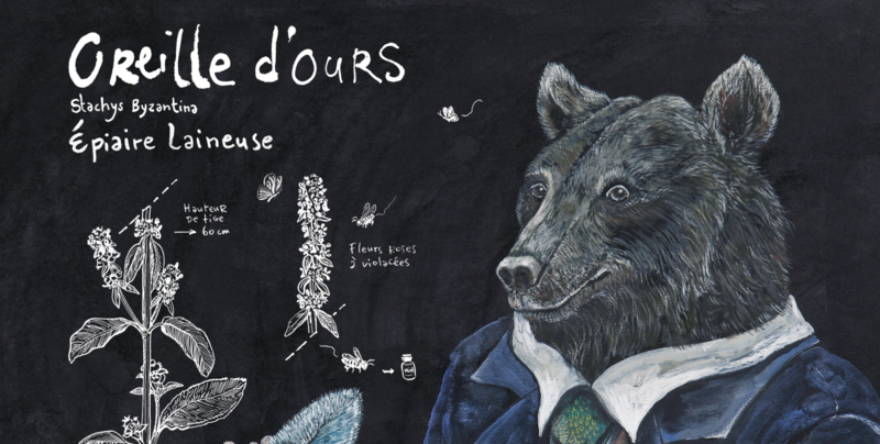 ours-expo-bestiaire-botanique